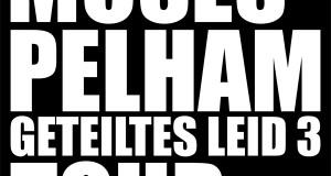 "Moses Pelham & Band – ""Geteiltes Leid""- Tour-Daten 2013 (News)"