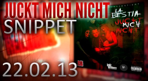 La Bestia - 'Juckt Mich Nicht'-Mixtape - Snippet | 22.02.2013
