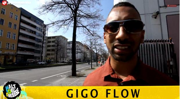 Halt die Fresse: 05 - Nr. 285 - Gigo Flow